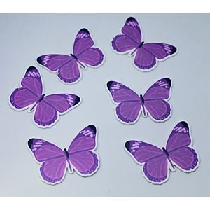 Butterfly Wishes - Wooden Butterfly Toppers